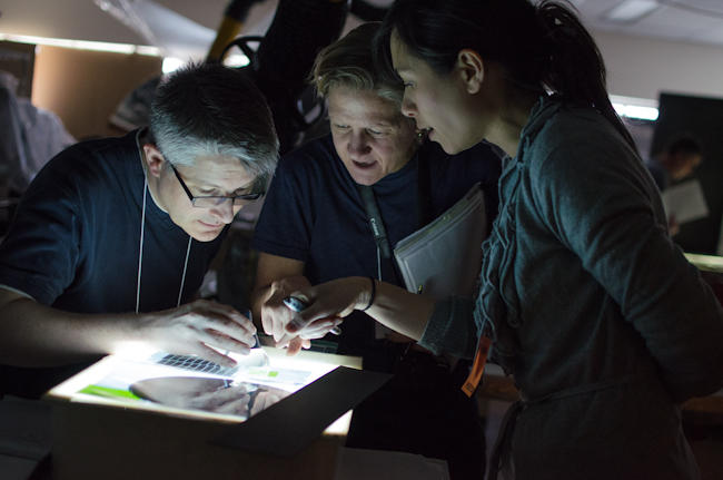Samantha Springer at right examining radiograph images on a light box with colleagues